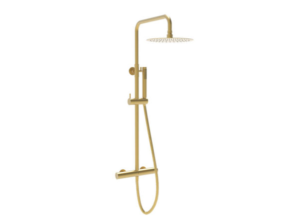 Brushed Brass Series 2 Shower